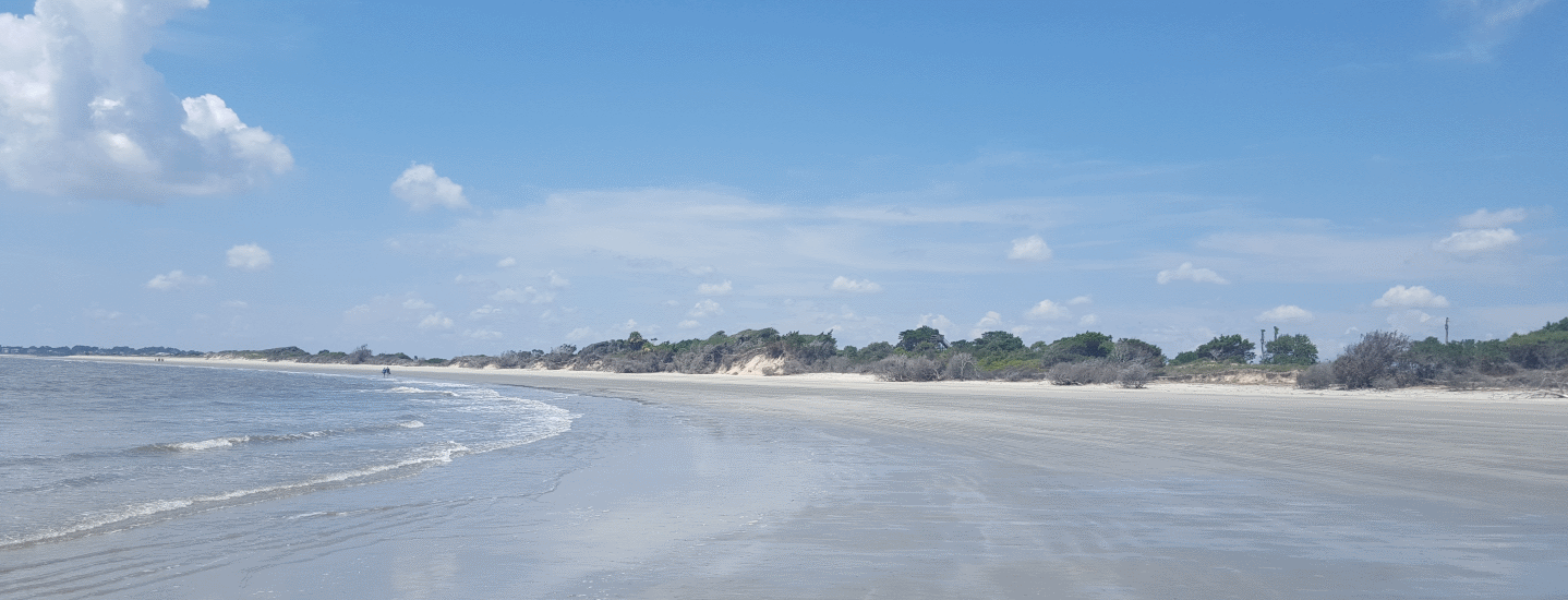 Surfrider Foundation Joins Lawsuit To Protect Georgia's Sea Island Spit